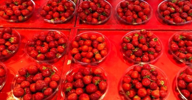 www.candidacoach aardbeien