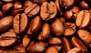 koffie candidadieet